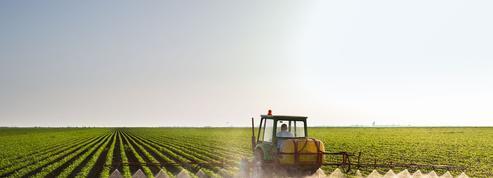 L'alimentation représente plus du tiers des émissions de gaz à effet de serre