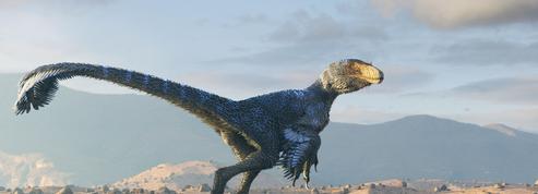 Les dinosaures étaient en déclin avant l'impact fatal