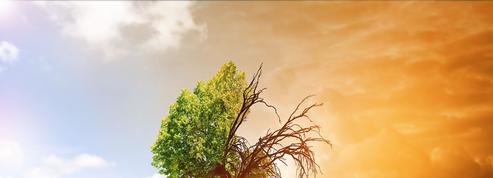 Quel sera l'impact du réchauffement pour nos enfants?