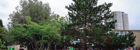 Corde à sauter contre terrain de foot: l'école visée par les maires de gauche