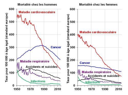 Depuis les années 1950, la mortalité par maladie cardiovasculaire ne cesse de diminuer.