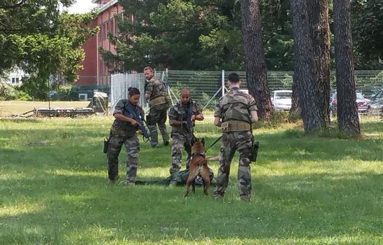 Un exercice de neutralisation d'un suspect avec un chien. ©Marine Dessaux
