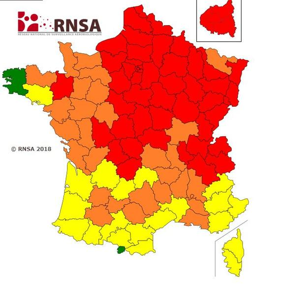 En rouge, les zones où le risque d'allergies aux pollens est «très élevé», notamment dans les Alpes et le Nord. En orange, le risque est «élevé». En jaune, notamment dans le Sud-Ouest, le risque d'allergie respiratoire est jugé «moyen».