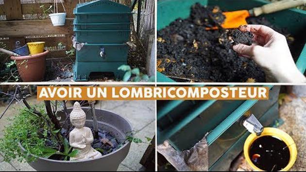 Lombricomposteur: comment réduire vos déchets