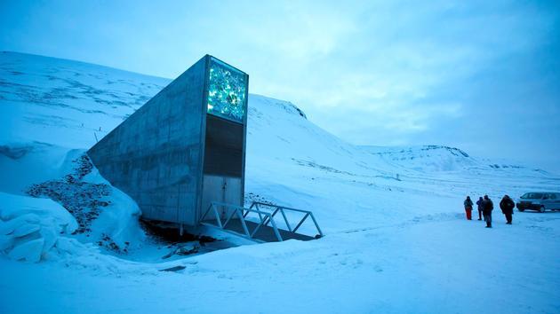 Un million de graines préservées dans une «Arche de Noé» souterraine en Arctique
