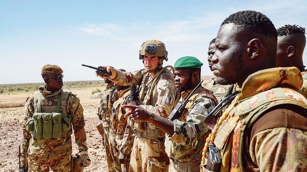 Après l'effort militaire au Sahel, Macron réclame un sursaut politique africain - Le Figaro