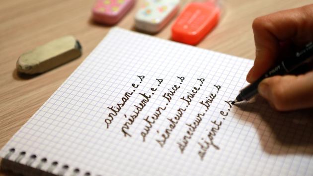 Écriture inclusive: les incohérences d'un système complexe - Le Figaro