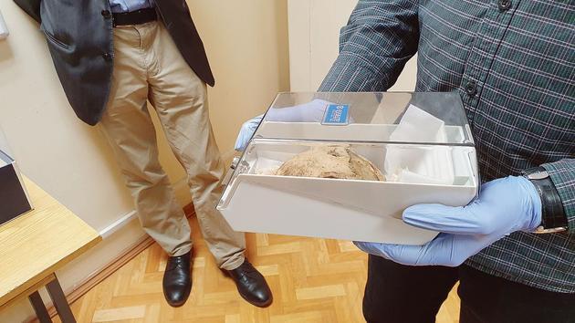 À Moscou, l'incroyable histoire du crâne d'Adolf Hitler