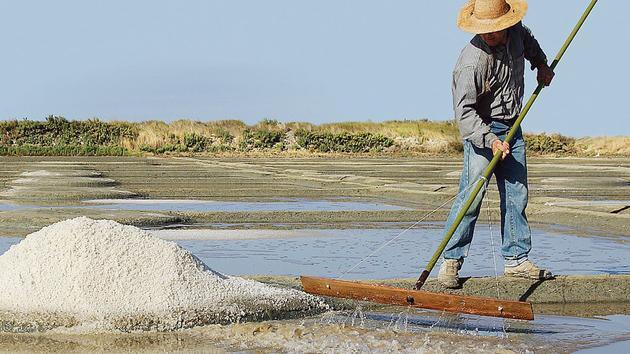 Bisbilles à Bruxelles sur la labellisation bio du sel
