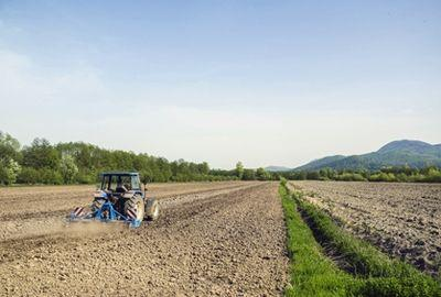Les prix des terres agricoles vendues en 2017