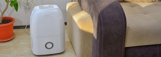 Comparatif : quel est le meilleur absorbeur d'humidité ?