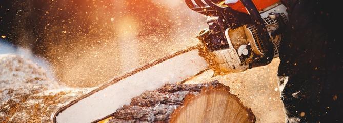 Comparatif : quelle est la meilleure tronçonneuse thermique ?