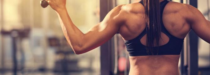 Comparatif des bancs de musculation : notre sélection de 3 modèles