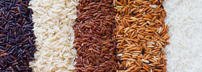 Riz basmati, riz thaï ou riz parfumé… Quel riz choisir ?