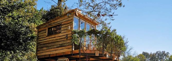 Constructions sauvages : des cabanes d'exception sur RMC Découverte