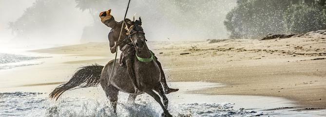 Voyages : les plus beaux reportages photo du Fig Mag