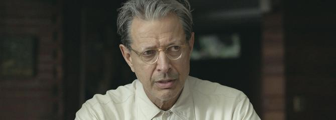 The Mountain: Jeff Goldblum, Docteur Maboul