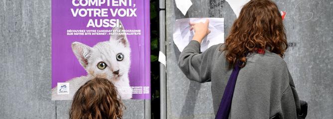 Un député LR veut interdire les photos d'animaux sur les affiches et bulletins électoraux