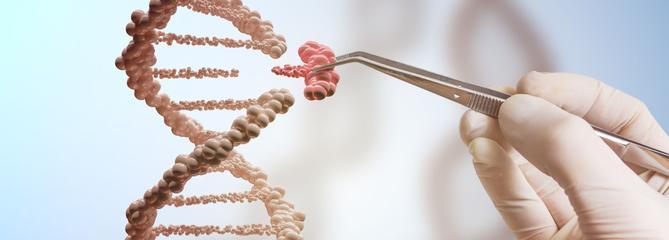 Le secret du pliage des protéines dévoilé par Google