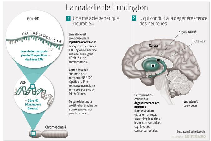 infographie/LeFigaro