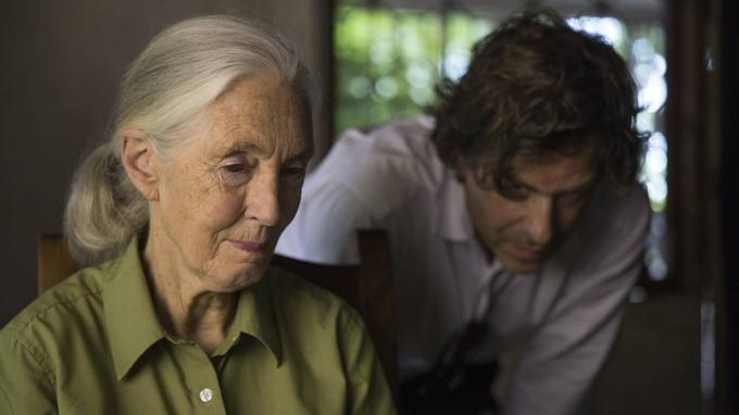 Jane Goodall aujourd'hui. © National Geographic/David Guttenfelder.