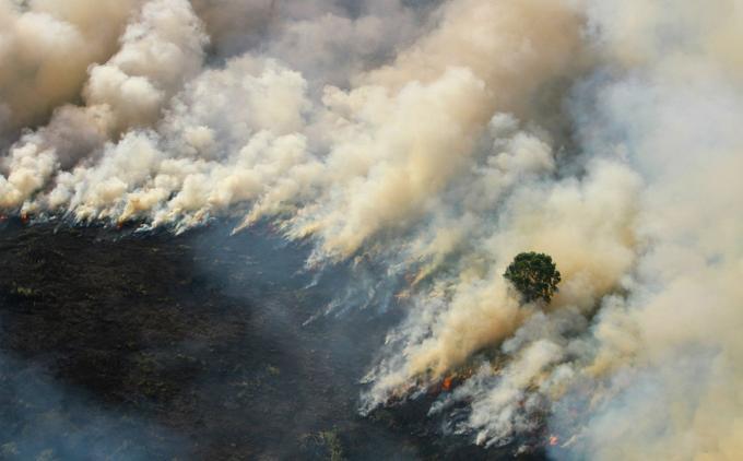 Une vue aérienne des feux ravageant une forêt de la province indonésienne de Kalimantan, en Indonésie, le 29 août dernier.