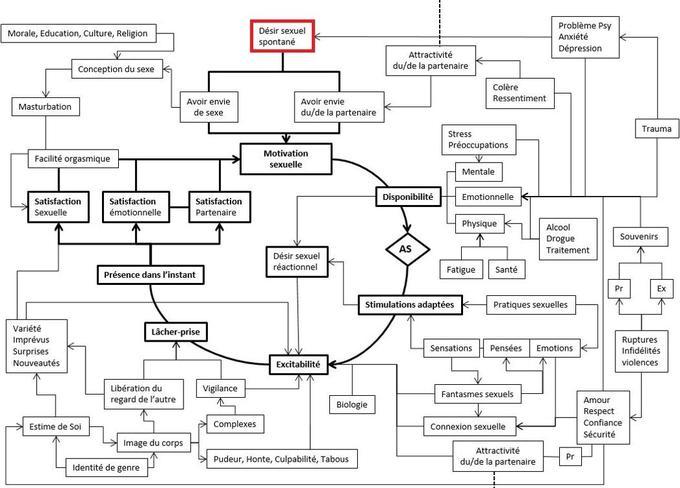 L'algorithme de bilan sexologique rassemble les paramètres qui influencent le bon déroulement de la sexualité.