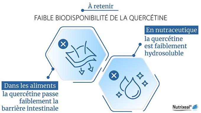 Le potentiel d'action de la quercétine sur notre organisme est limité par sa faible biodisponibilité.