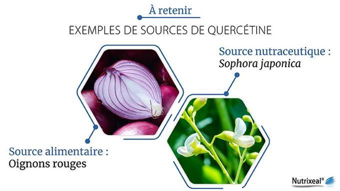 Oignons rouges et Sophora japonica sont deux sources importantes de quercétine.
