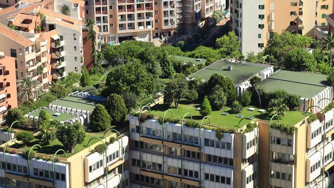 Nous voulons créer un jardin sur le toit de la copropriété