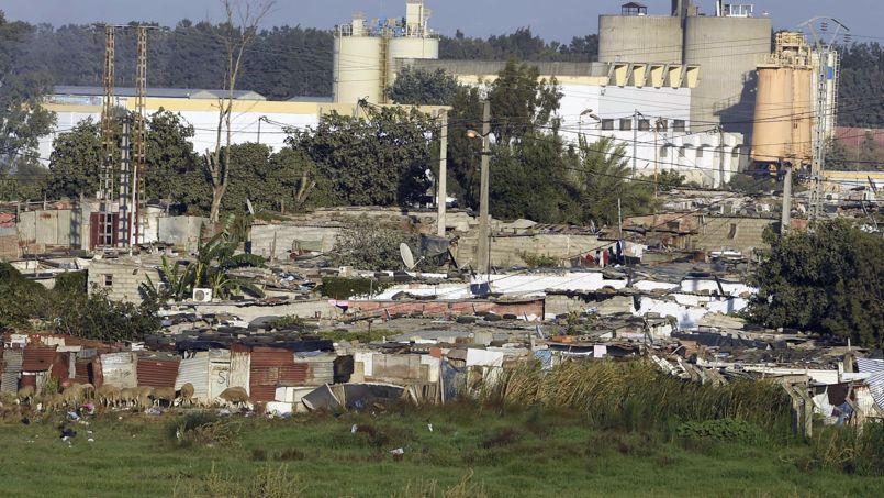 ALGERIA-URBANISM-CITY-FILES