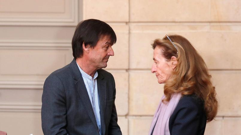 Nicolas Hulot et Nicole Belloubet, qui possèdent les plus gros patrimoines immobiliers dans le gouvernement, ont omis de déclarer des montants non négligeables.