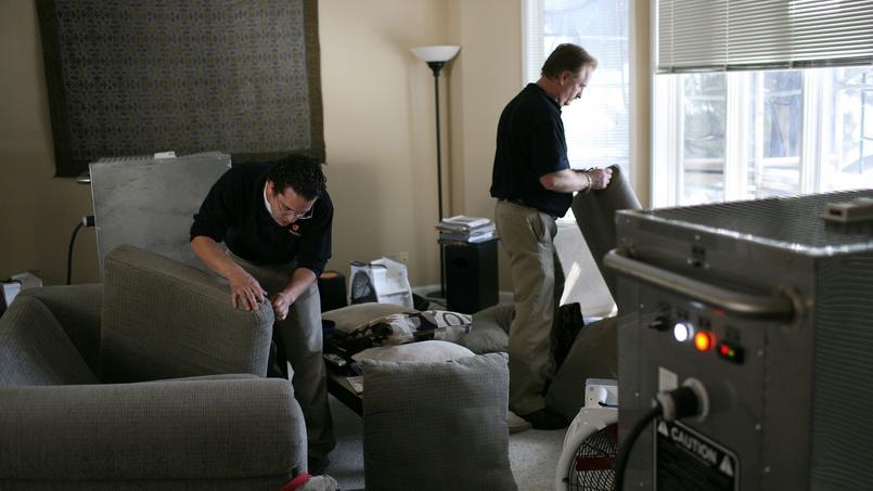 comment se d barrasser de punaises de lit dans son logement. Black Bedroom Furniture Sets. Home Design Ideas