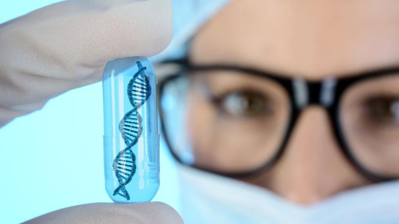 Les télomères, une piste pour ralentir le vieillissement cellulaire