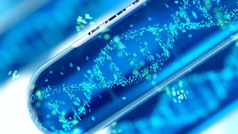 Vieillesse: existe-t-il des gènes de la longévité?