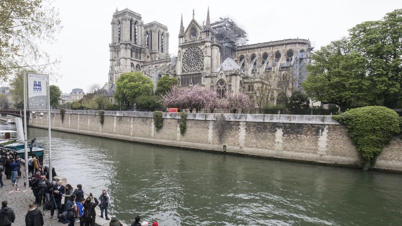 «Notre-Dame, un chef-d'œuvre des tailleurs de pierres»