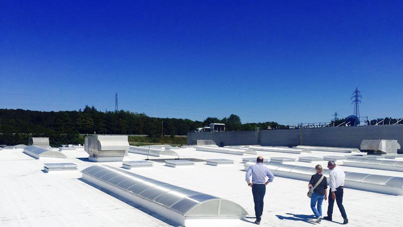Peindre son toit en blanc pourrait aider à sauver la planète