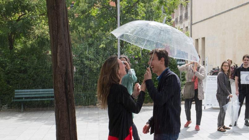 L'arbre à pluie expérimenté l'an dernier, dans un square du Xe arrondissement de Paris.