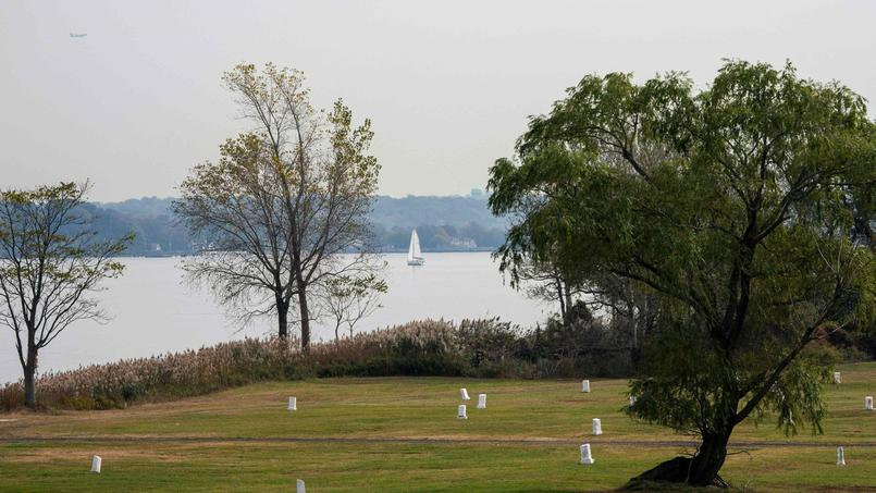 New York's 'island of the dead' to welcome more of the living
