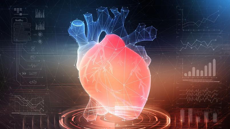 Les espoirs de la thérapie cellulaire pour régénérer le cœur