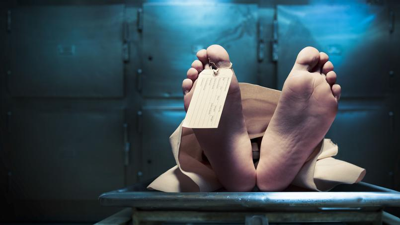Scandale des dons de corps à Paris-Descartes: 24 familles portent plainte
