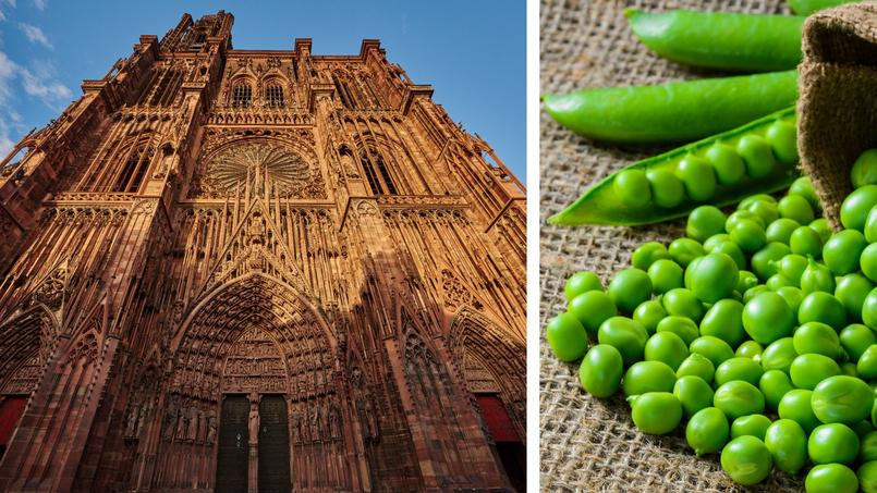 Comment les petits pois ont permis à l'architecture gothique de s'élever