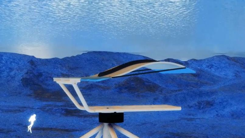 Eels Energy a fabriqué une éolienne sous l'eau pour faire de l'électricité sans dommage pour les poissons.