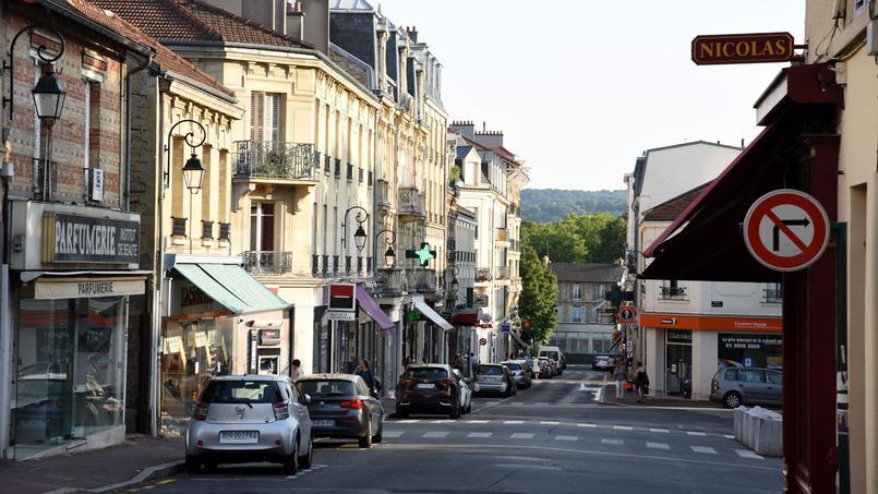 Vue du centre-ville du Vésinet.