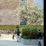 La verdure, chère à Anne Hidalgo, ne sera pas oubliée avec ce jardin intérieur accompagné de son inévitable potager urbain.