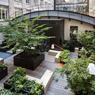 La restructuration de l'immeuble Art & Co a permis d'exploiter et de «verdir» des espaces autrefois délaissés.
