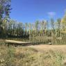 <b>Régner sur un domaine de chasse.</b> Un étang de plus d'un hectare complète les 43 hectares de bois et 30 hectares de plaines et de friches.