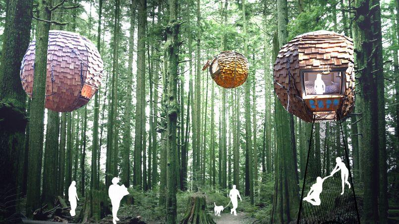 Un hébergement écologique pensé par les étudiants de Paris 1 Sorbonne et Toulouse Jean-Jaurès.