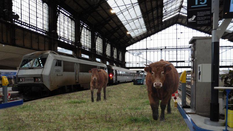 La gare d'Austerlitz imaginée par les étudiants du centre Michel Serres