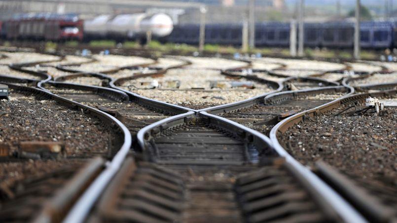 La SNCF Immobilier dispose de 20.000 hectares de terrain dont au moins 10% sont rapidement constructibles.Crédit: G. Julien/AFP
